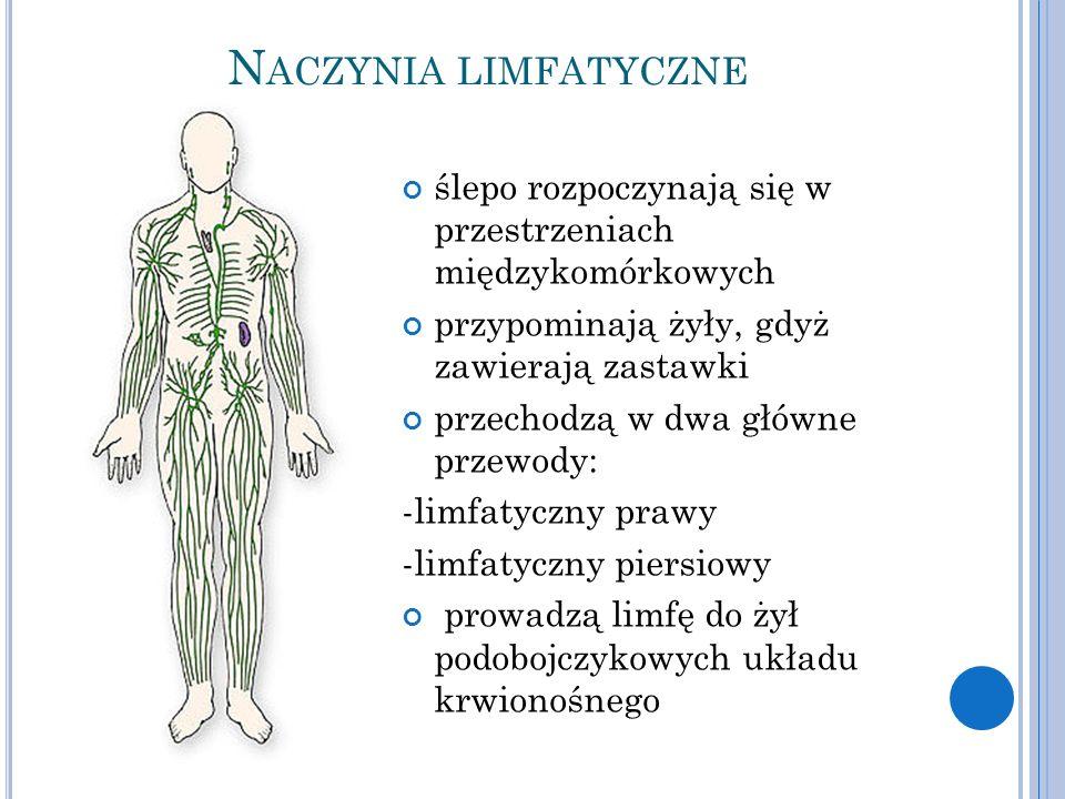 Naczynia limfatyczne ślepo rozpoczynają się w przestrzeniach międzykomórkowych. przypominają żyły, gdyż zawierają zastawki.