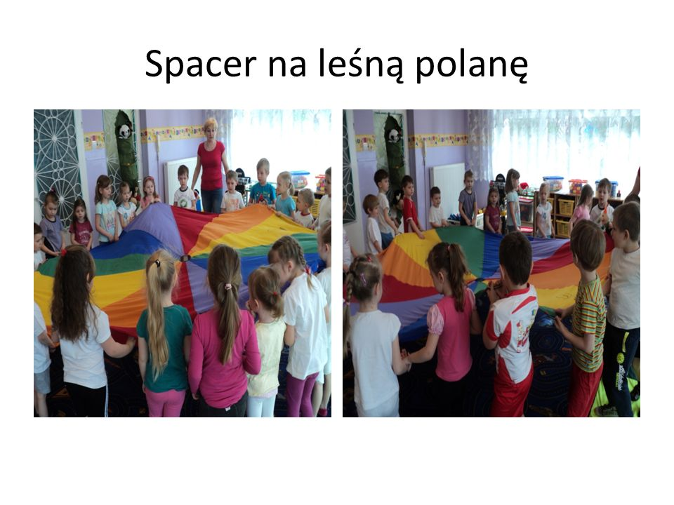 Spacer na leśną polanę