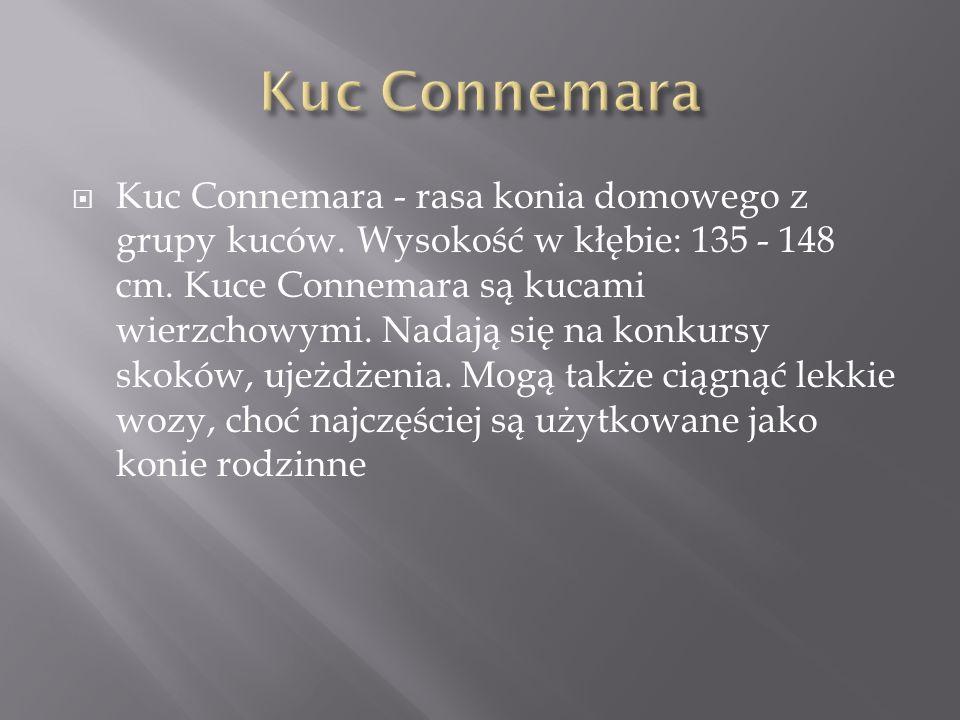 Kuc Connemara