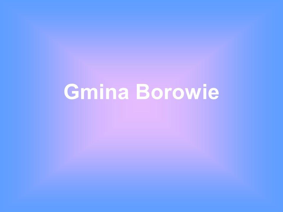 Gmina Borowie