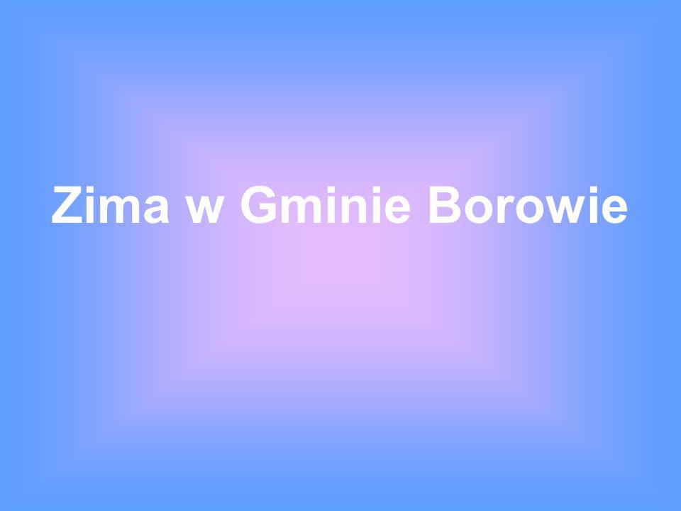 Zima w Gminie Borowie