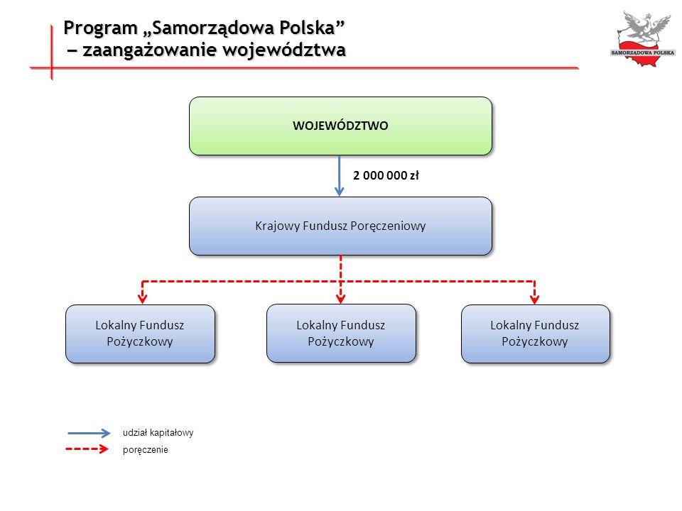 """Program """"Samorządowa Polska – zaangażowanie województwa"""