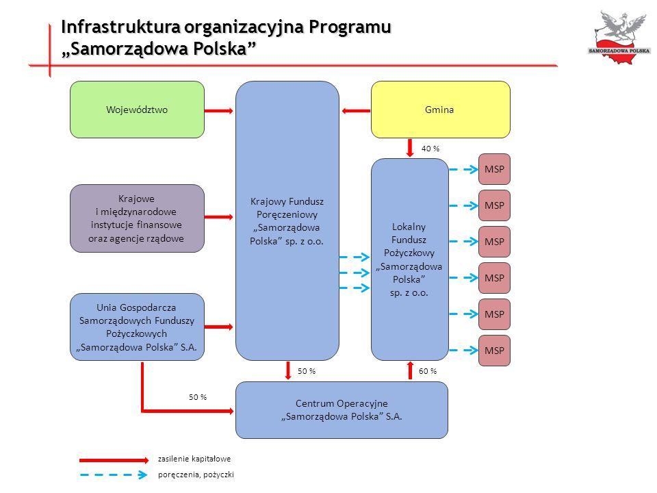 """Infrastruktura organizacyjna Programu """"Samorządowa Polska"""