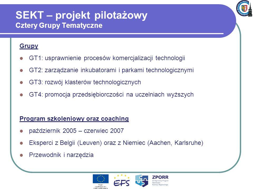 SEKT – projekt pilotażowy Cztery Grupy Tematyczne