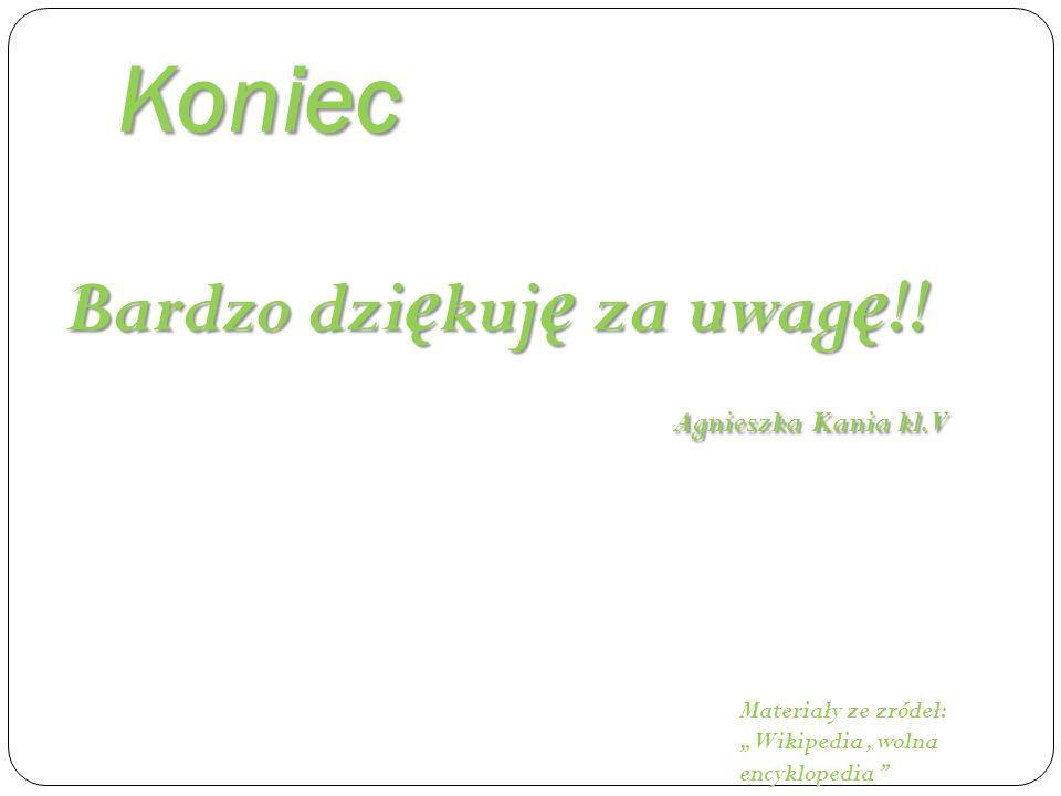 Koniec Bardzo dziękuję za uwagę!! Agnieszka Kania kl. V