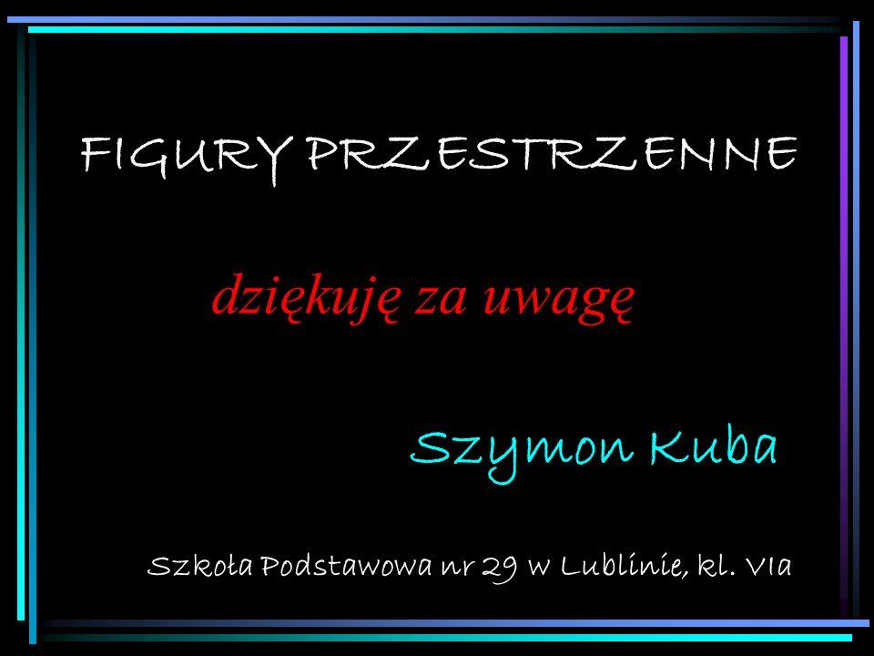 Szkoła Podstawowa nr 29 w Lublinie, kl. VIa