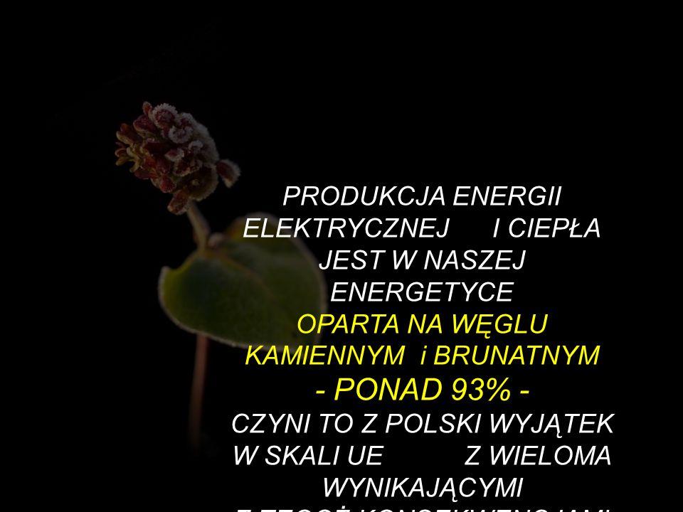 PRODUKCJA ENERGII ELEKTRYCZNEJ I CIEPŁA JEST W NASZEJ ENERGETYCE OPARTA NA WĘGLU KAMIENNYM i BRUNATNYM - PONAD 93% -