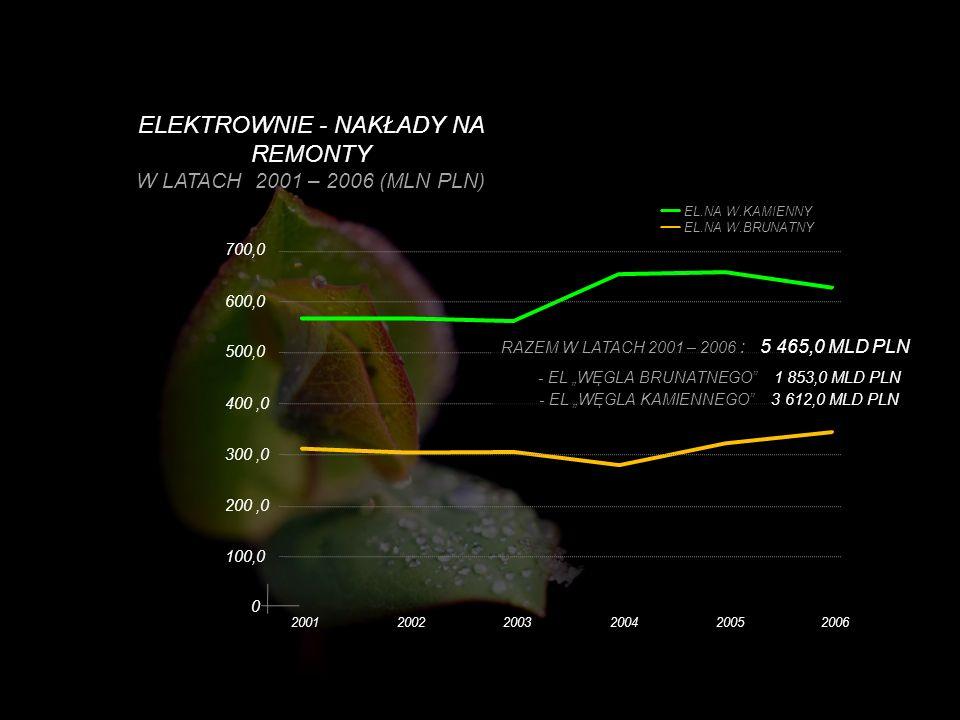 ELEKTROWNIE - NAKŁADY NA REMONTY W LATACH 2001 – 2006 (MLN PLN)