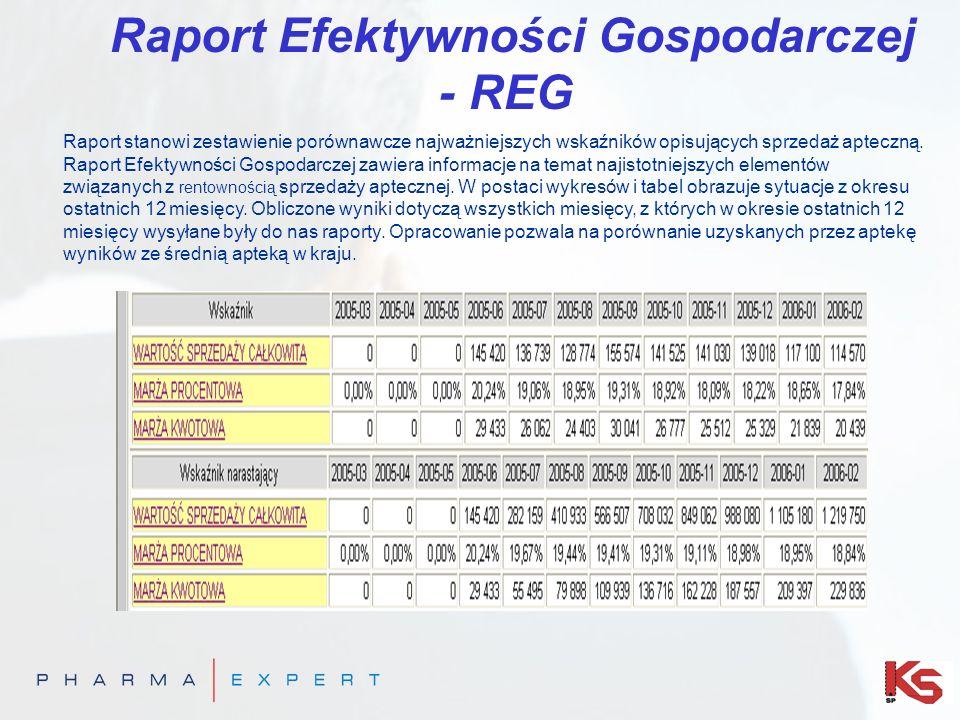 Raport Efektywności Gospodarczej