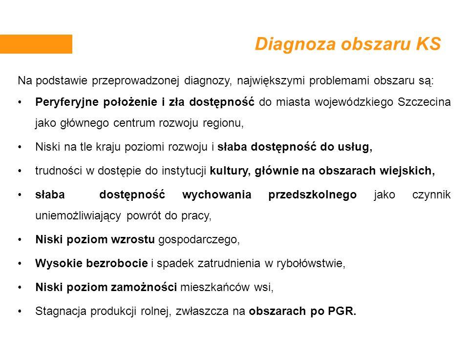 Diagnoza obszaru KS Na podstawie przeprowadzonej diagnozy, największymi problemami obszaru są: