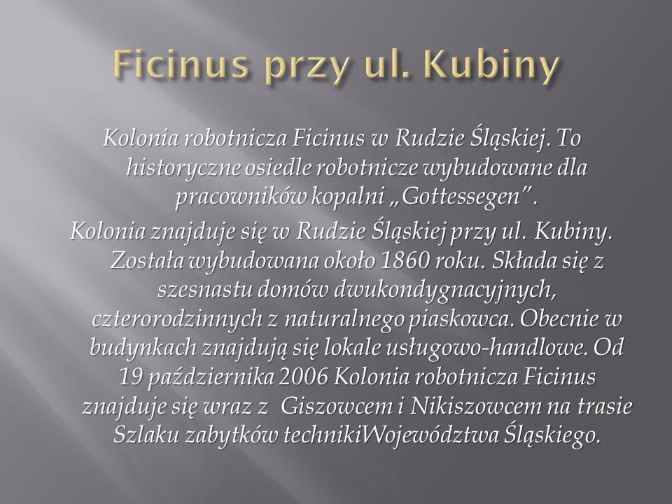 Ficinus przy ul. Kubiny