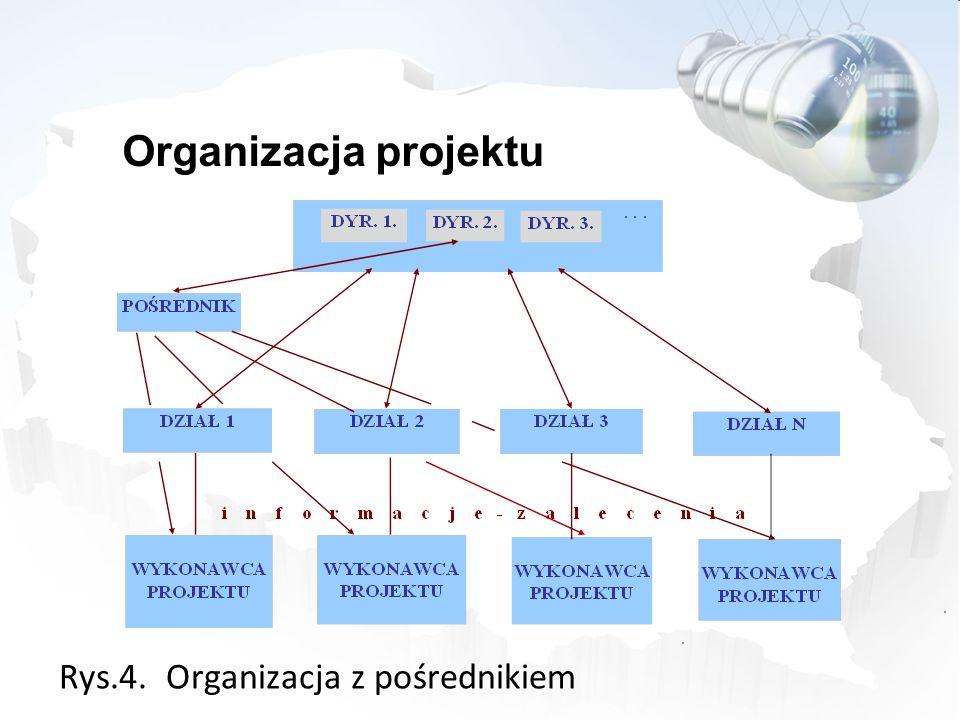Rys.4. Organizacja z pośrednikiem