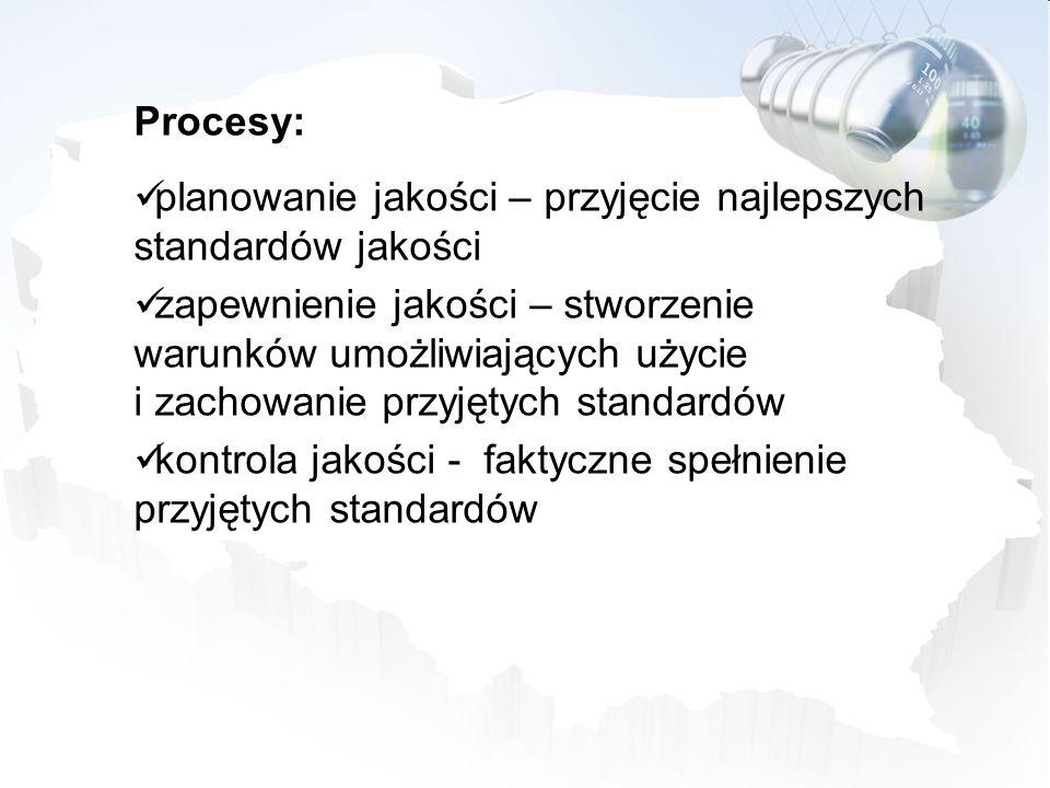 Procesy: planowanie jakości – przyjęcie najlepszych standardów jakości.