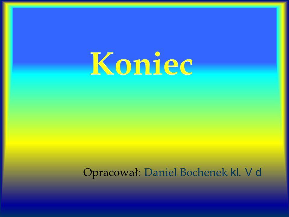Koniec Opracował: Daniel Bochenek kl. V d