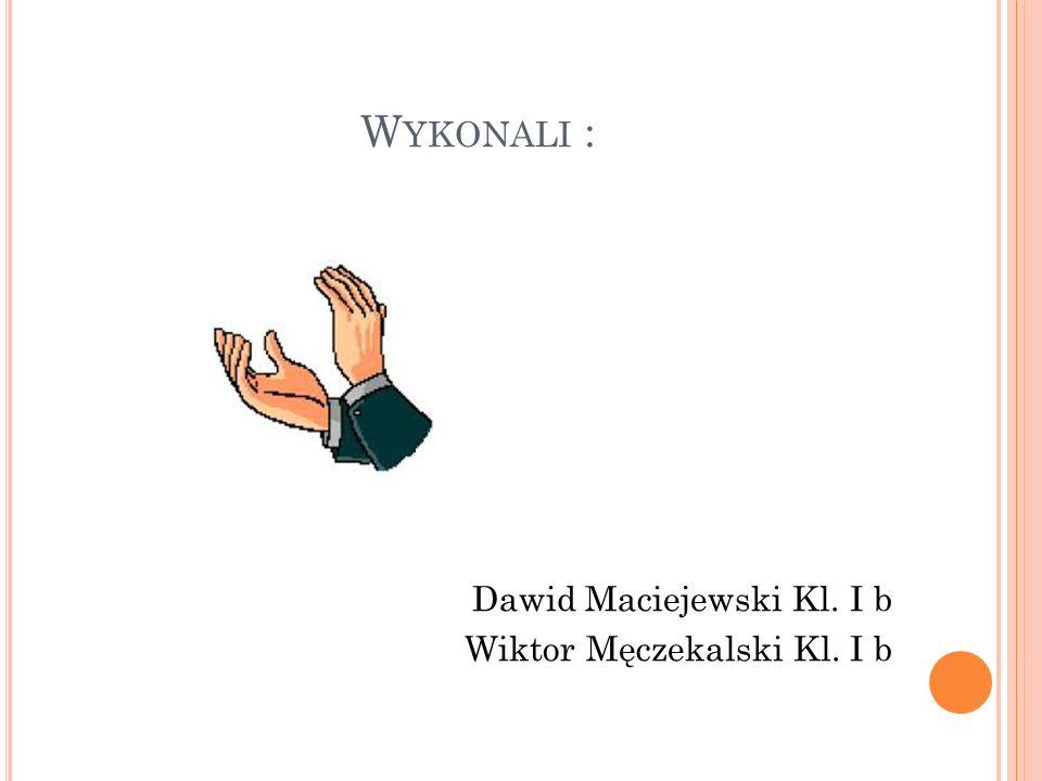 Wykonali : Dawid Maciejewski Kl. I b Wiktor Męczekalski Kl. I b