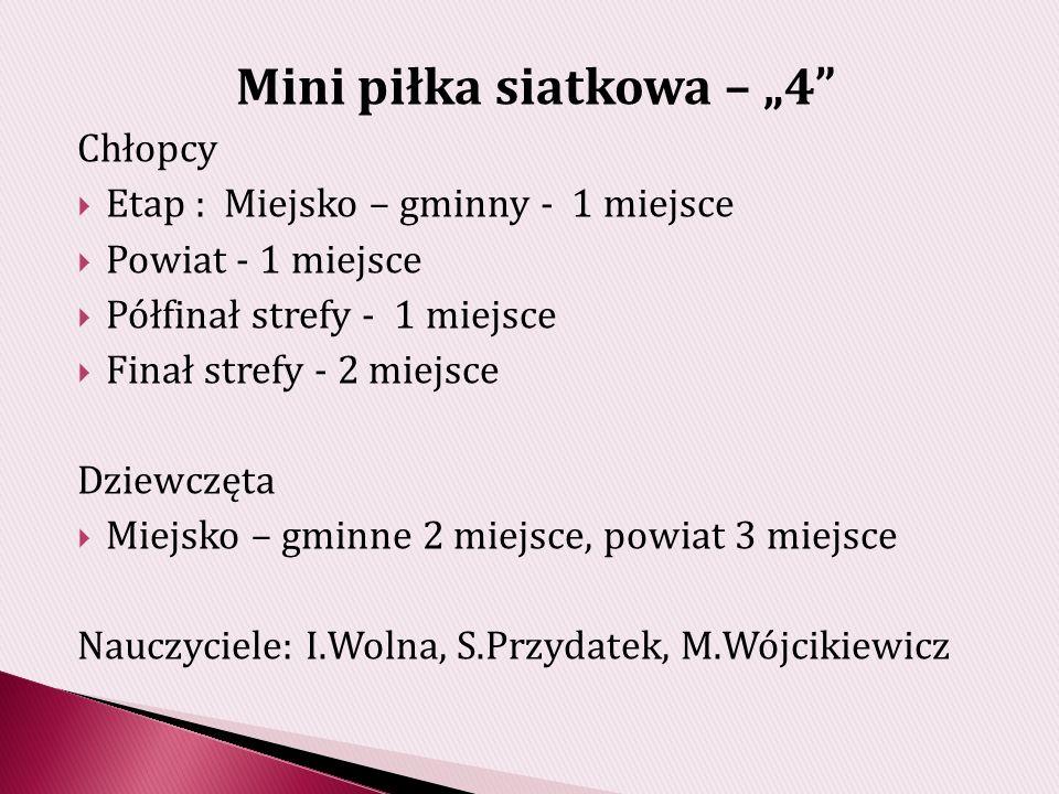 """Mini piłka siatkowa – """"4"""