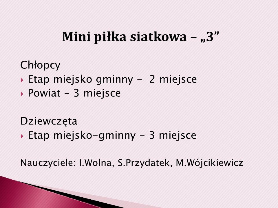 """Mini piłka siatkowa – """"3"""