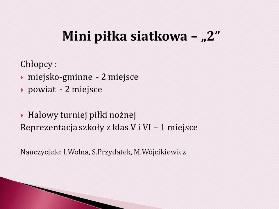 """Mini piłka siatkowa – """"2"""