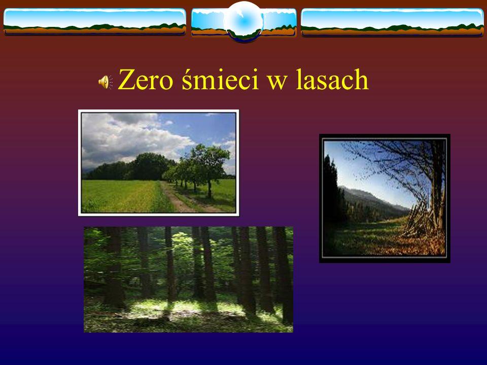 Zero śmieci w lasach