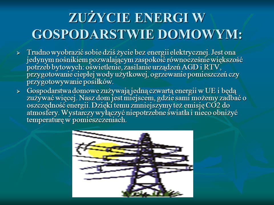 ZUŻYCIE ENERGI W GOSPODARSTWIE DOMOWYM: