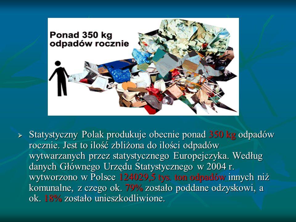 Statystyczny Polak produkuje obecnie ponad 350 kg odpadów rocznie