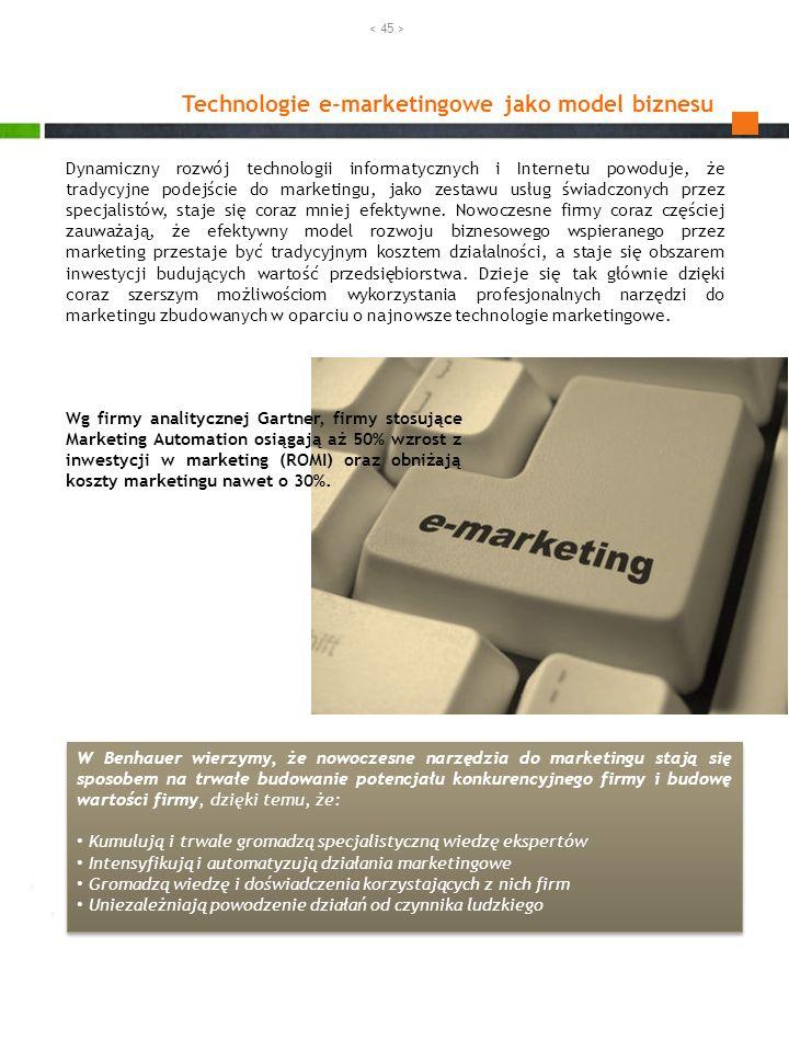 Technologie e-marketingowe jako model biznesu