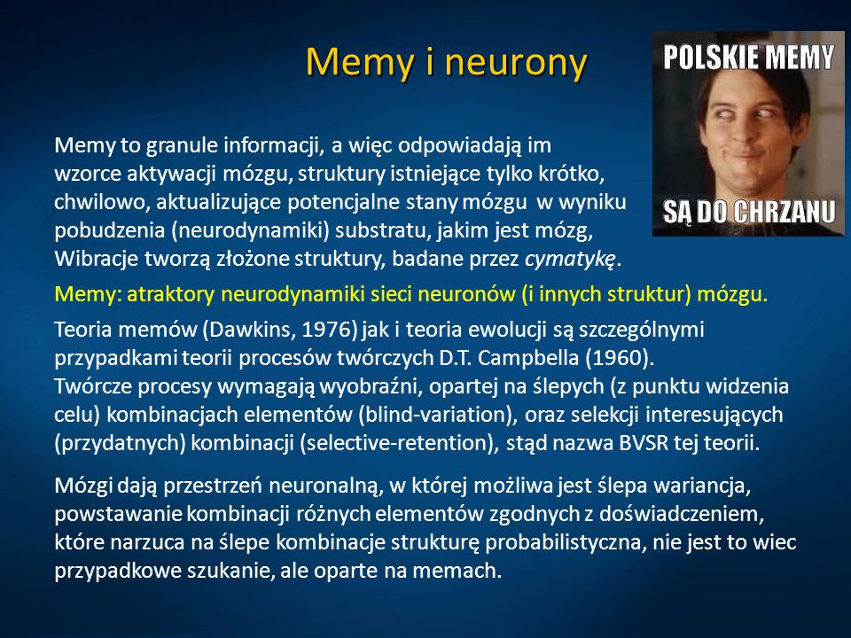 Memy i neurony