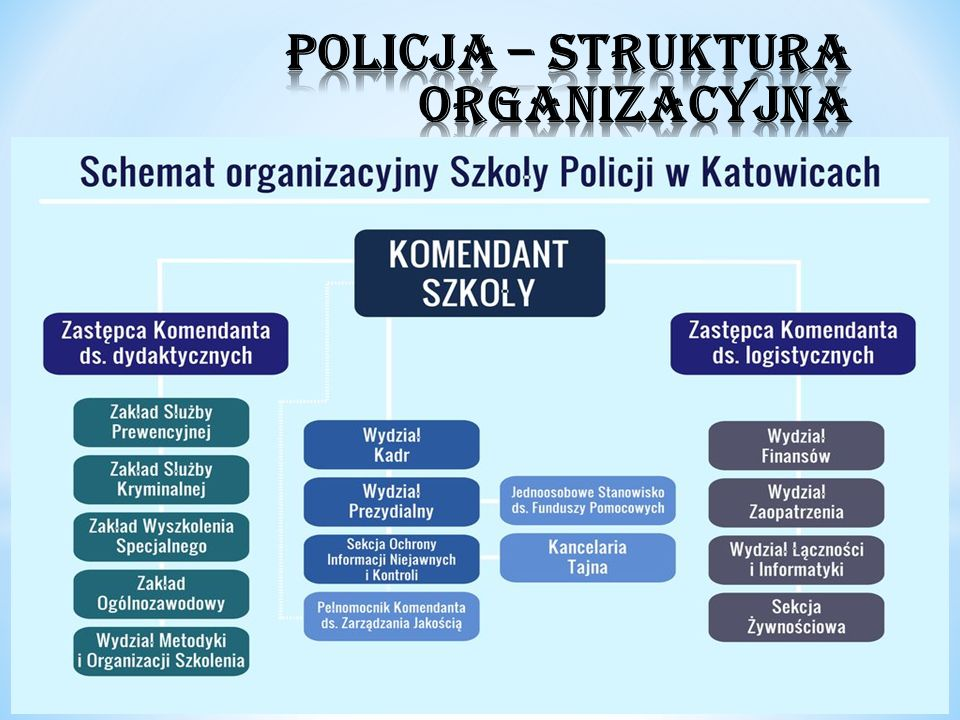 POLICJA – STRUKTURA ORGANIZACYJNA