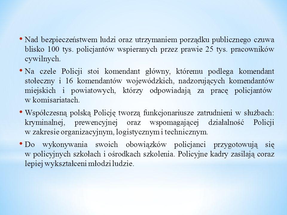 Nad bezpieczeństwem ludzi oraz utrzymaniem porządku publicznego czuwa blisko 100 tys. policjantów wspieranych przez prawie 25 tys. pracowników cywilnych.
