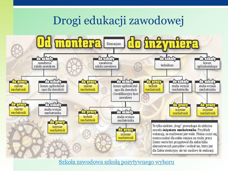 Drogi edukacji zawodowej