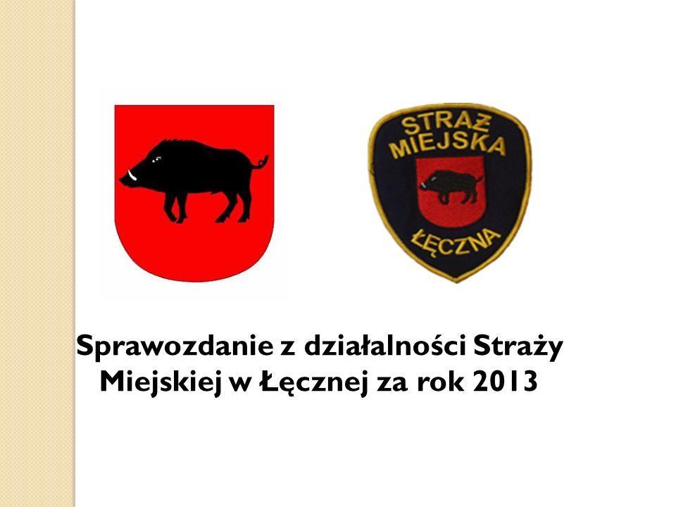 Sprawozdanie z działalności Straży Miejskiej w Łęcznej za rok 2013