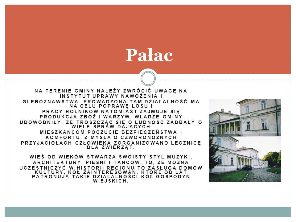 Pałac na terenie gminy należy zwrócić uwagę na