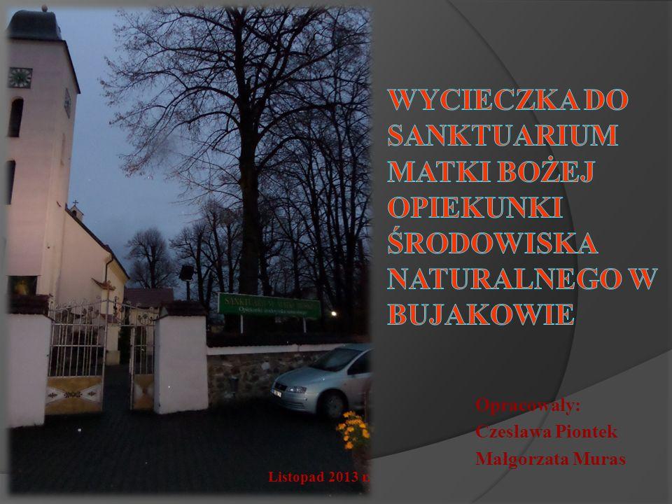 Opracowały: Czesława Piontek Małgorzata Muras