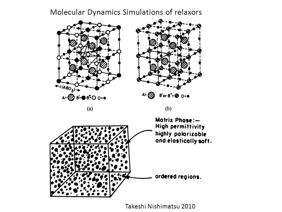 Molecular Dynamics Simulations of relaxors