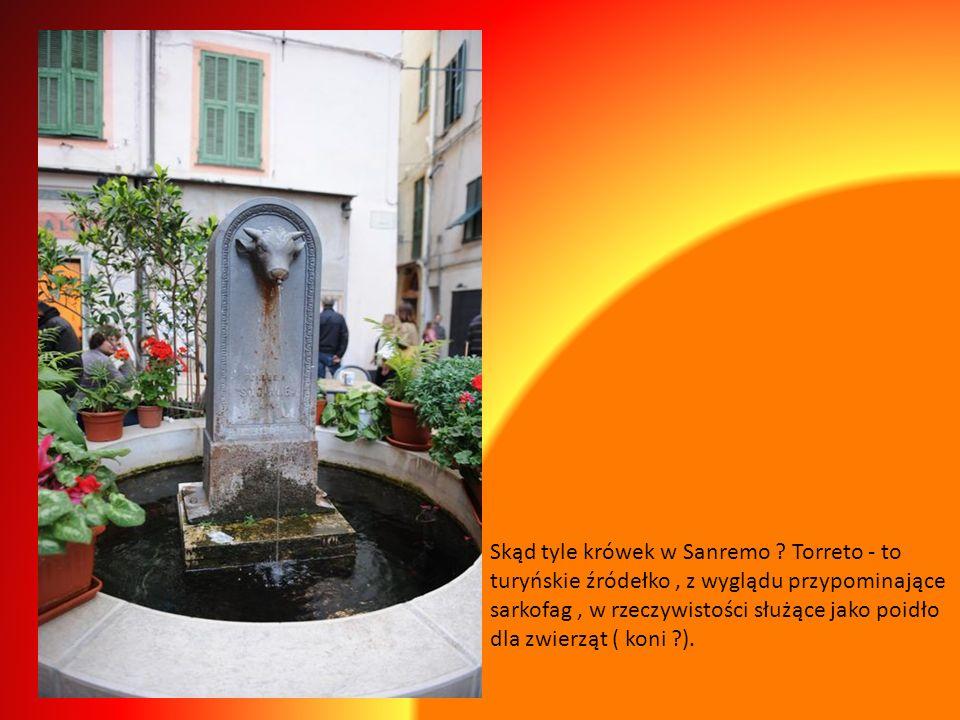 Skąd tyle krówek w Sanremo
