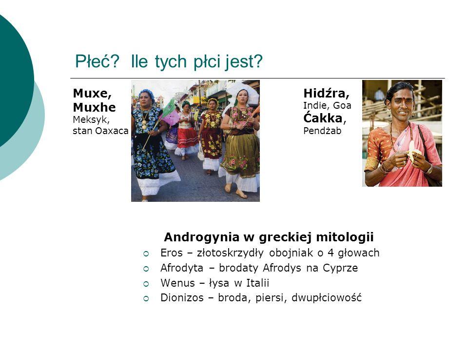 Androgynia w greckiej mitologii