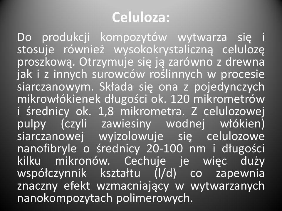 Celuloza: