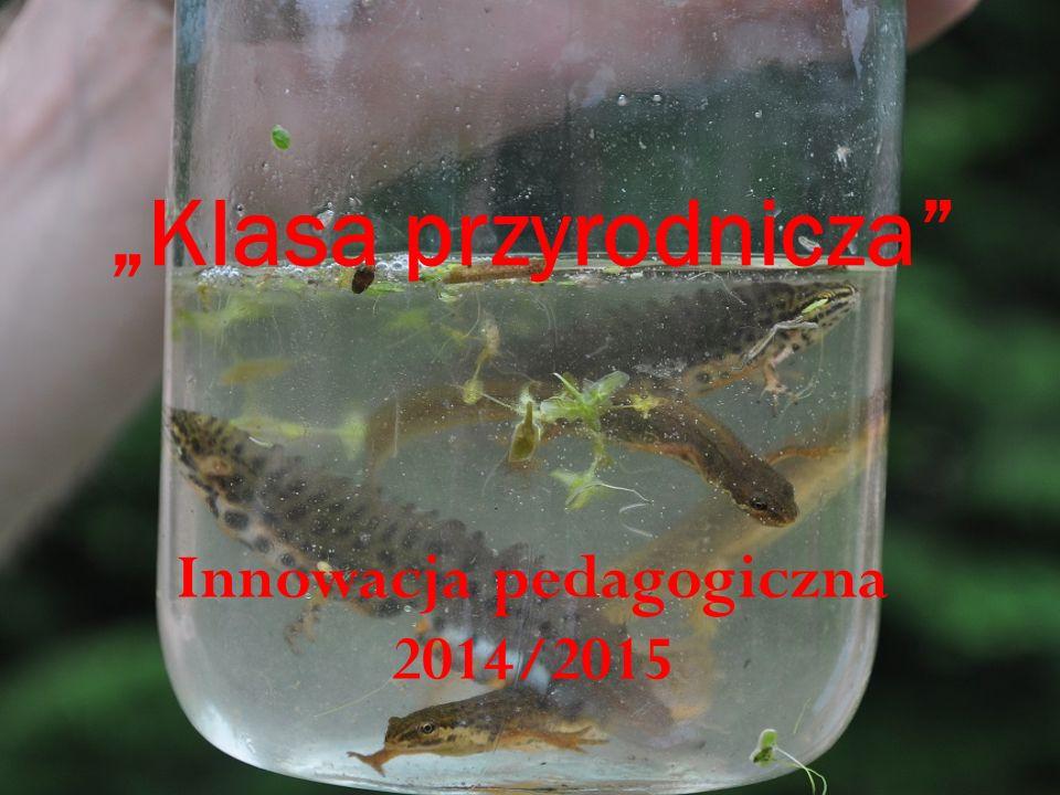 Innowacja pedagogiczna 2014/2015