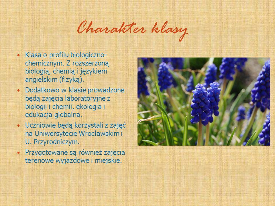 Charakter klasy Klasa o profilu biologiczno- chemicznym. Z rozszerzoną biologią, chemią i językiem angielskim (fizyką).