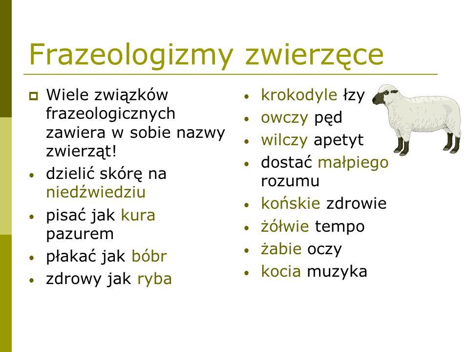 Frazeologizmy zwierzęce