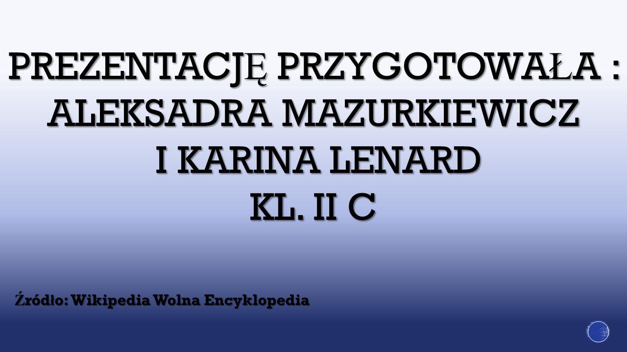 PREZENTACJĘ PRZYGOTOWAŁA : ALEKSADRA MAZURKIEWICZ I KARINA LENARD