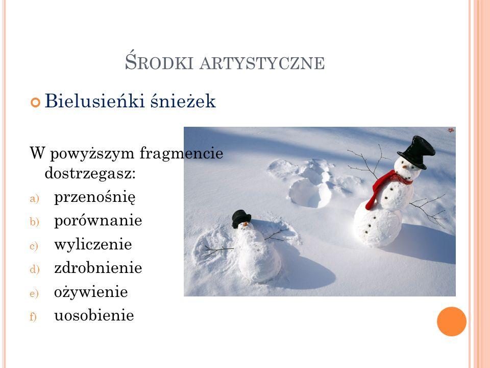 Środki artystyczne Bielusieńki śnieżek