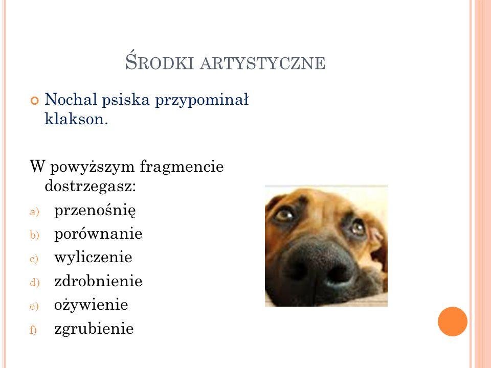 Środki artystyczne Nochal psiska przypominał klakson.