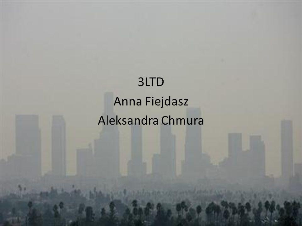 3LTD Anna Fiejdasz Aleksandra Chmura