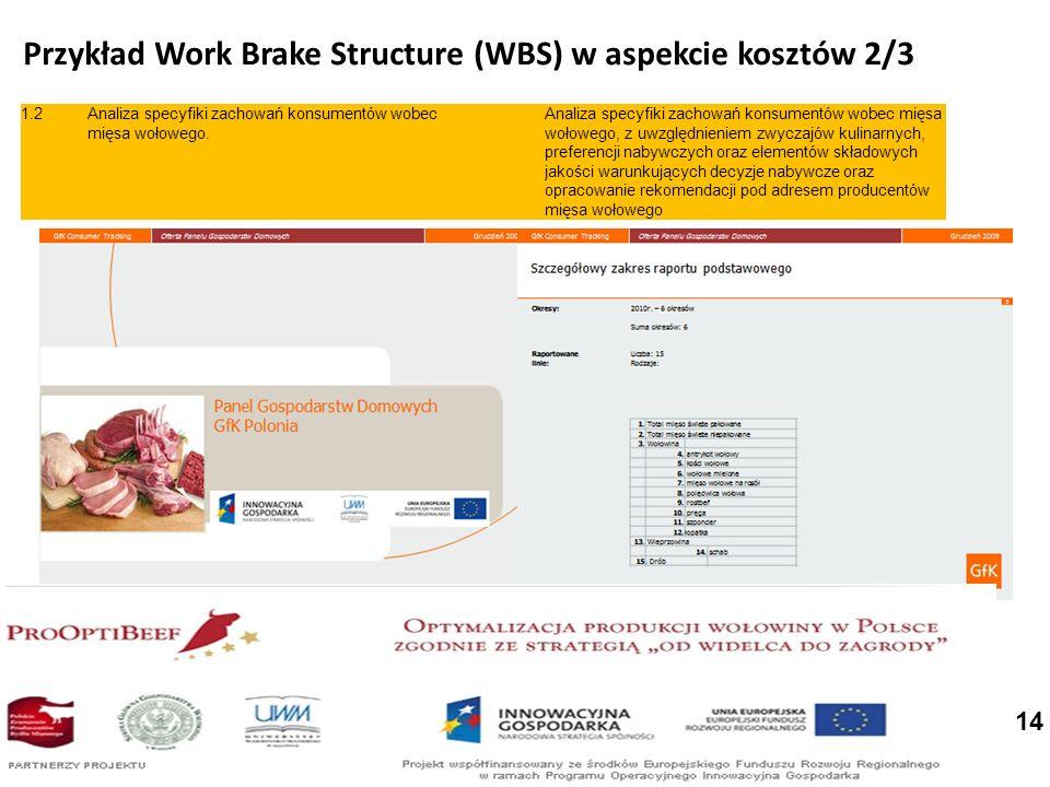 Przykład Work Brake Structure (WBS) w aspekcie kosztów 2/3