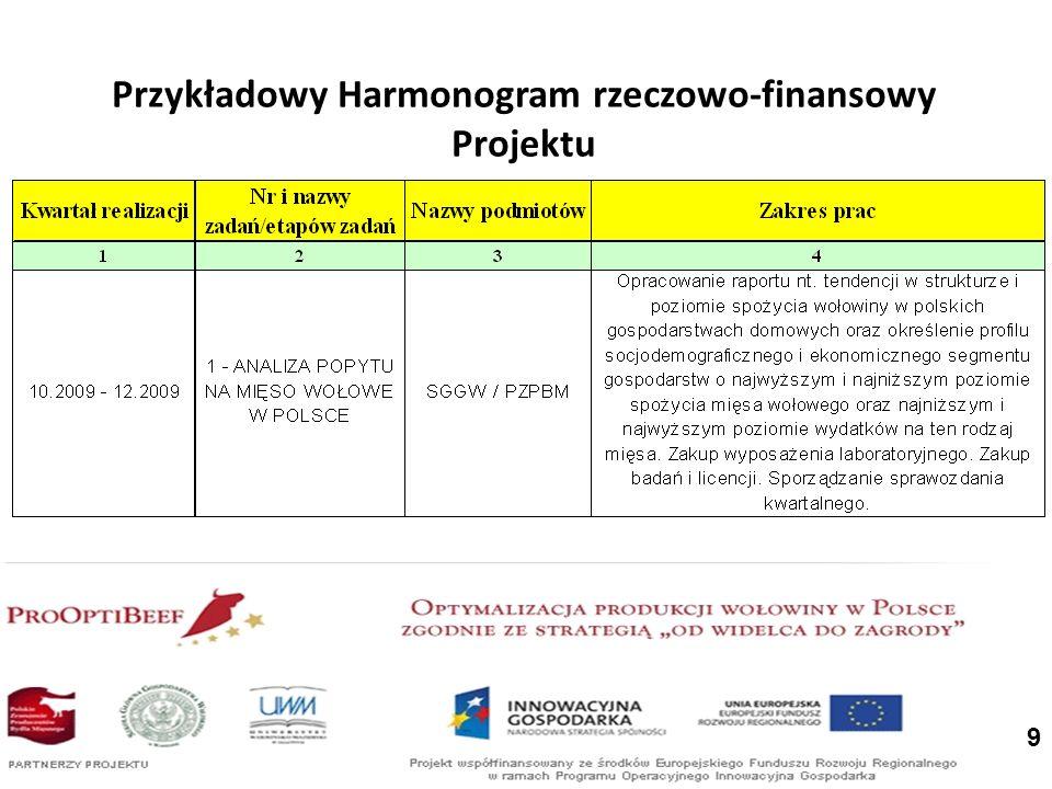 Przykładowy Harmonogram rzeczowo-finansowy Projektu
