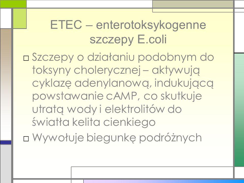 ETEC – enterotoksykogenne szczepy E.coli