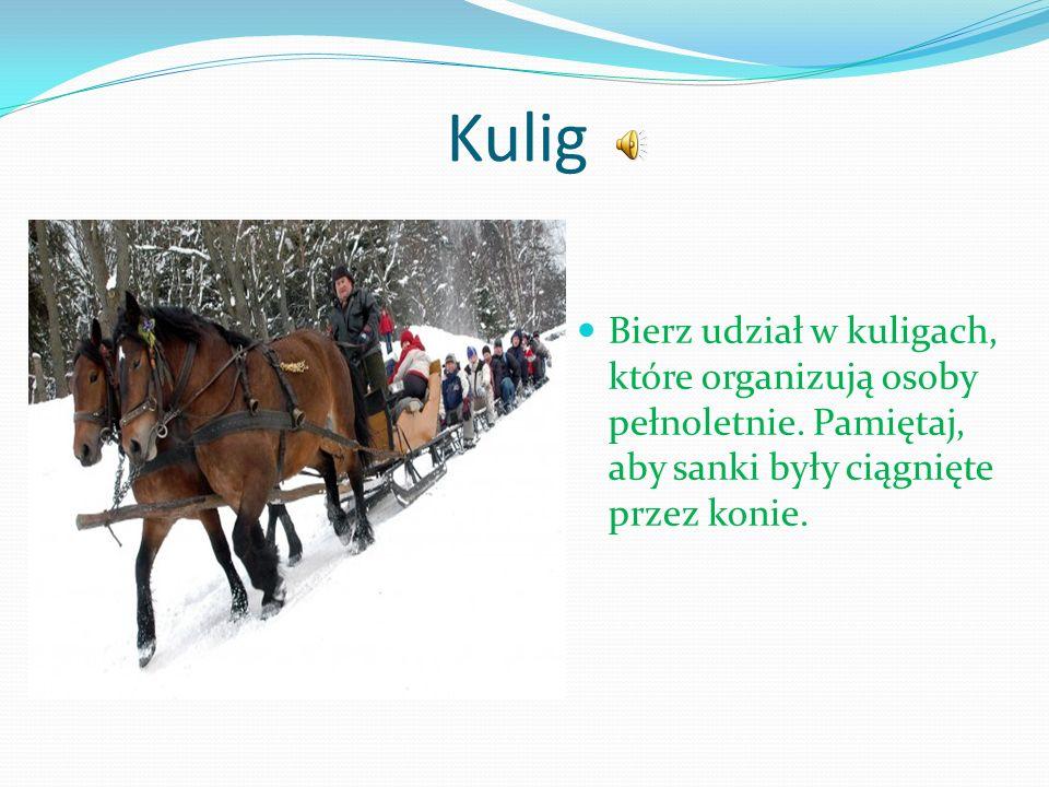 Kulig Bierz udział w kuligach, które organizują osoby pełnoletnie.