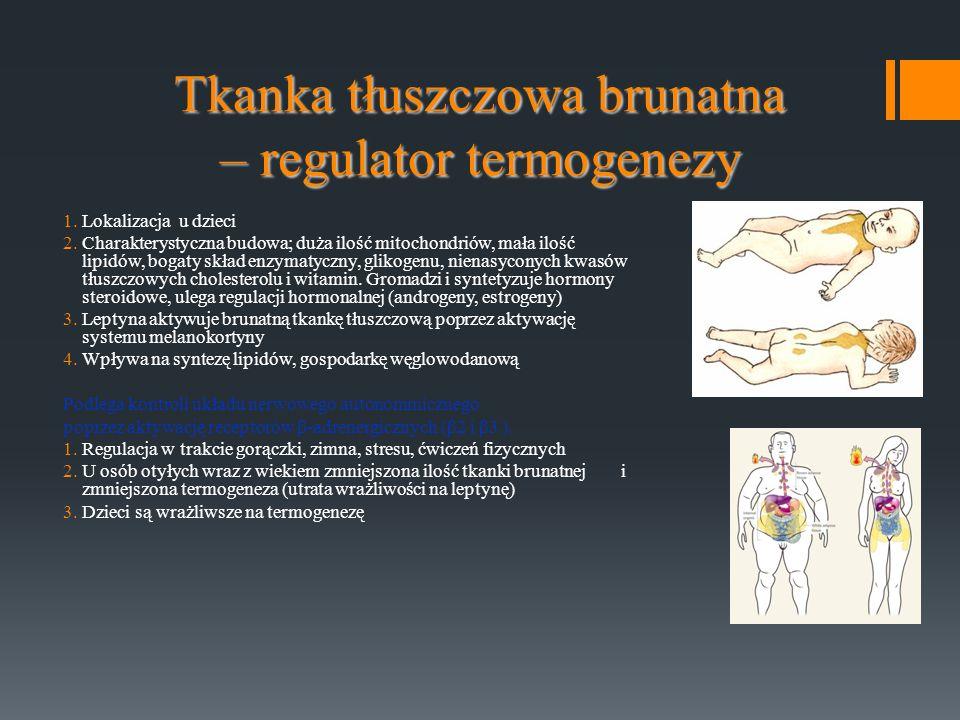 Tkanka tłuszczowa brunatna – regulator termogenezy