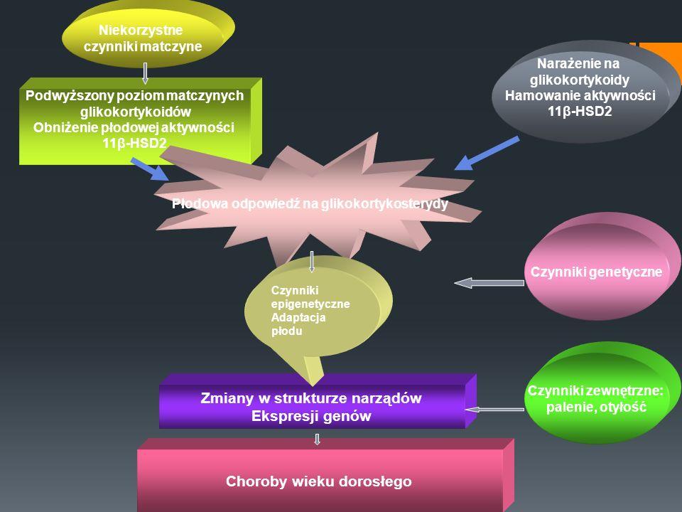 Zmiany w strukturze narządów Ekspresji genów Choroby wieku dorosłego